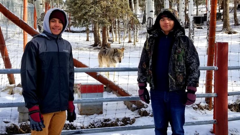 Peakview Cabin Pikes Peak Mountain Getaway - Colorado Wolf and Wildlife Center